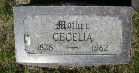 MARRIOTT, CECELIA - Dawes County, Nebraska | CECELIA MARRIOTT - Nebraska Gravestone Photos