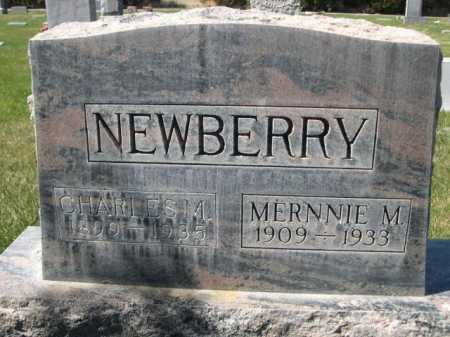 NEWBERRY, MERNNIE M. - Dawes County, Nebraska | MERNNIE M. NEWBERRY - Nebraska Gravestone Photos