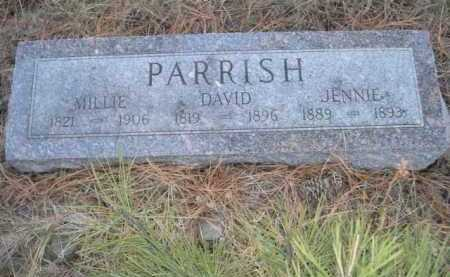 PARRISH, JENNIE - Dawes County, Nebraska | JENNIE PARRISH - Nebraska Gravestone Photos