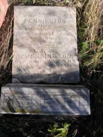 PENNINGTON, WARNER - Dawes County, Nebraska | WARNER PENNINGTON - Nebraska Gravestone Photos