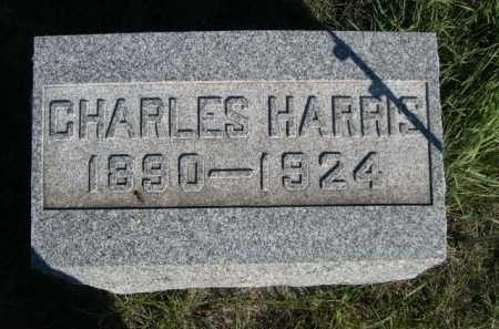 REED, CHARLES HARRIS - Dawes County, Nebraska   CHARLES HARRIS REED - Nebraska Gravestone Photos