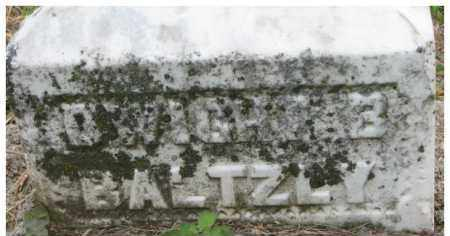 BALTZLY, DWIGHT B. - Dixon County, Nebraska   DWIGHT B. BALTZLY - Nebraska Gravestone Photos