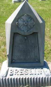 BRESLIN, MARY - Dixon County, Nebraska   MARY BRESLIN - Nebraska Gravestone Photos