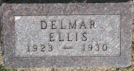 ELLIS, DELMAR - Dixon County, Nebraska   DELMAR ELLIS - Nebraska Gravestone Photos