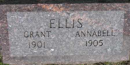 ELLIS, ANNABELL - Dixon County, Nebraska | ANNABELL ELLIS - Nebraska Gravestone Photos