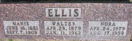 ELLIS, NORA - Dixon County, Nebraska | NORA ELLIS - Nebraska Gravestone Photos