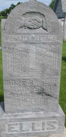 ELLIS, ROSE B. - Dixon County, Nebraska | ROSE B. ELLIS - Nebraska Gravestone Photos