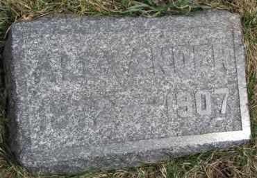 FINNEGAN, ALEXANDER - Dixon County, Nebraska | ALEXANDER FINNEGAN - Nebraska Gravestone Photos
