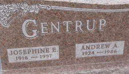 GENTRUP, ANDREW A. - Dixon County, Nebraska   ANDREW A. GENTRUP - Nebraska Gravestone Photos