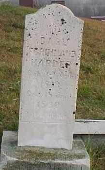 HARDER, CARL FERDINAND - Dixon County, Nebraska   CARL FERDINAND HARDER - Nebraska Gravestone Photos