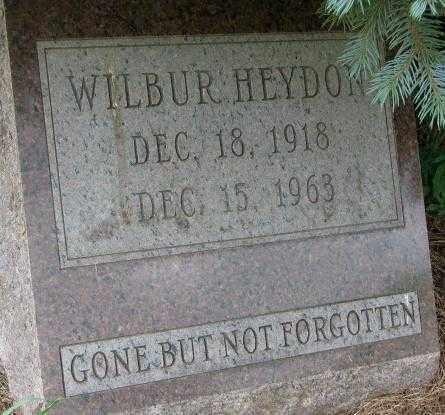 HEYDON, WILBUR - Dixon County, Nebraska | WILBUR HEYDON - Nebraska Gravestone Photos