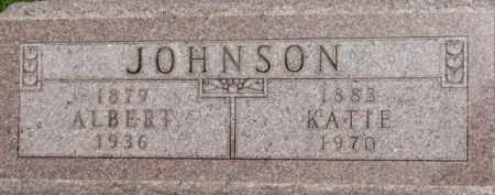 JOHNSON, ALBERT - Dixon County, Nebraska | ALBERT JOHNSON - Nebraska Gravestone Photos
