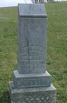 JOHNSON, CLARA EMILIA - Dixon County, Nebraska   CLARA EMILIA JOHNSON - Nebraska Gravestone Photos