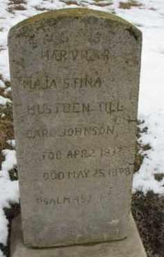 JOHNSON, CARL - Dixon County, Nebraska   CARL JOHNSON - Nebraska Gravestone Photos