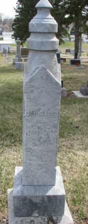 JOHNSON, CAROLINE - Dixon County, Nebraska | CAROLINE JOHNSON - Nebraska Gravestone Photos