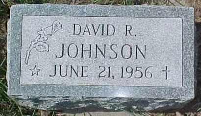 JOHNSON, DAVID R. - Dixon County, Nebraska | DAVID R. JOHNSON - Nebraska Gravestone Photos