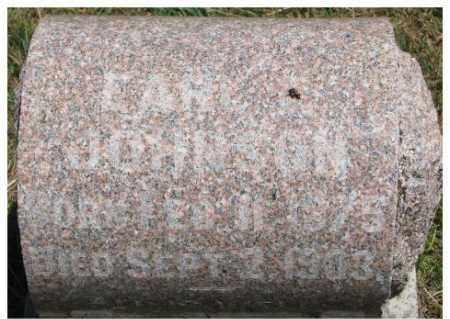 JOHNSON, EARL F. - Dixon County, Nebraska | EARL F. JOHNSON - Nebraska Gravestone Photos