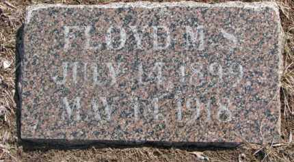 JOHNSON, FLOYD M.S. - Dixon County, Nebraska   FLOYD M.S. JOHNSON - Nebraska Gravestone Photos
