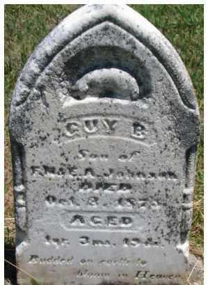 JOHNSON, GUY B. - Dixon County, Nebraska   GUY B. JOHNSON - Nebraska Gravestone Photos
