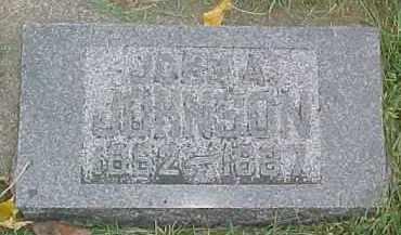 JOHNSON, JOHN A. - Dixon County, Nebraska | JOHN A. JOHNSON - Nebraska Gravestone Photos