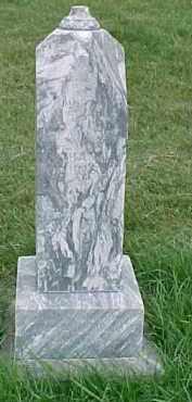 JOHNSON, JOHANNA - Dixon County, Nebraska | JOHANNA JOHNSON - Nebraska Gravestone Photos