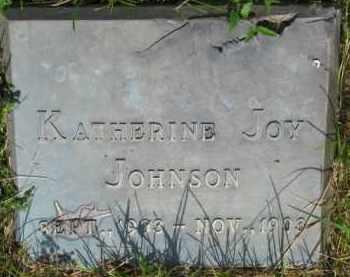 JOHNSON, KATHERINE JOY - Dixon County, Nebraska   KATHERINE JOY JOHNSON - Nebraska Gravestone Photos