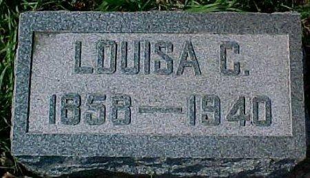 JOHNSON, LOUISA C.  - Dixon County, Nebraska   LOUISA C.  JOHNSON - Nebraska Gravestone Photos