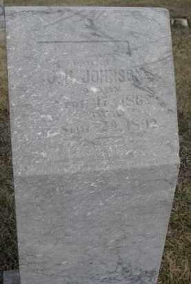 JOHNSON, LILLYAN N. - Dixon County, Nebraska   LILLYAN N. JOHNSON - Nebraska Gravestone Photos