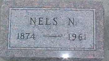 JOHNSON, NELS N. - Dixon County, Nebraska | NELS N. JOHNSON - Nebraska Gravestone Photos