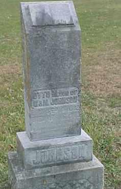JOHNSON, OTTO M. - Dixon County, Nebraska | OTTO M. JOHNSON - Nebraska Gravestone Photos
