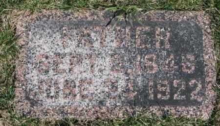 LIEWER, FATHER - Dixon County, Nebraska | FATHER LIEWER - Nebraska Gravestone Photos