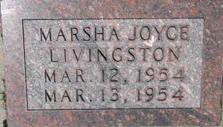 LIVINGSTON, MARSHA JOYCE - Dixon County, Nebraska | MARSHA JOYCE LIVINGSTON - Nebraska Gravestone Photos