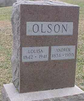 OLSON, LOUISA - Dixon County, Nebraska   LOUISA OLSON - Nebraska Gravestone Photos