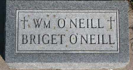 O'NEILL, BRIGET - Dixon County, Nebraska | BRIGET O'NEILL - Nebraska Gravestone Photos