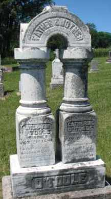 O'TOOLE, CATHERINE - Dixon County, Nebraska | CATHERINE O'TOOLE - Nebraska Gravestone Photos