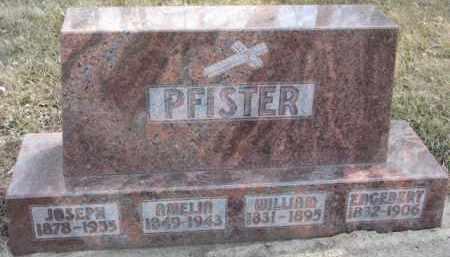 PFISTER, AMELIA - Dixon County, Nebraska | AMELIA PFISTER - Nebraska Gravestone Photos