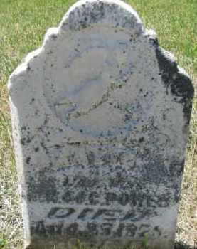 POWER, KATIE - Dixon County, Nebraska | KATIE POWER - Nebraska Gravestone Photos