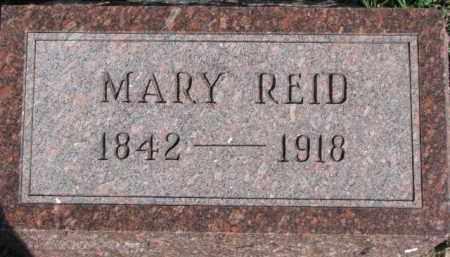 REID, MARY - Dixon County, Nebraska | MARY REID - Nebraska Gravestone Photos