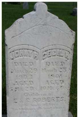 ROBERTS, CECIL HOPE - Dixon County, Nebraska   CECIL HOPE ROBERTS - Nebraska Gravestone Photos