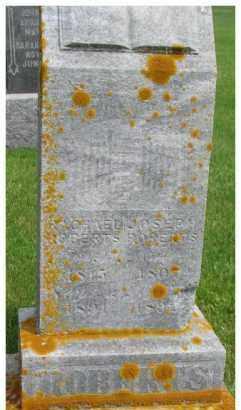 ROBERTS, RACHEL - Dixon County, Nebraska | RACHEL ROBERTS - Nebraska Gravestone Photos
