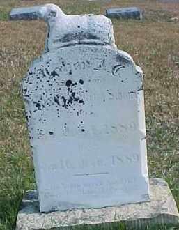 SCHRAM, JOHAN A. (C?) - Dixon County, Nebraska   JOHAN A. (C?) SCHRAM - Nebraska Gravestone Photos