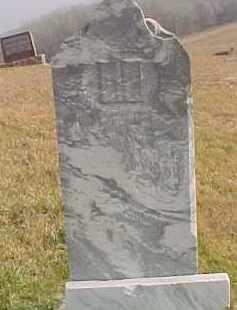 SCHULTZ, AUGUSTINE WILHELMINE LOUISE - Dixon County, Nebraska | AUGUSTINE WILHELMINE LOUISE SCHULTZ - Nebraska Gravestone Photos