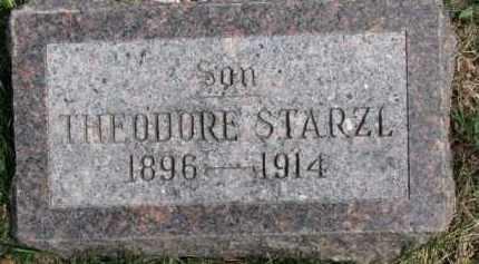 STARZL, THEODORE - Dixon County, Nebraska | THEODORE STARZL - Nebraska Gravestone Photos
