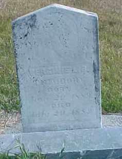 TRIMBORN, VIRGINIE L.B. - Dixon County, Nebraska | VIRGINIE L.B. TRIMBORN - Nebraska Gravestone Photos