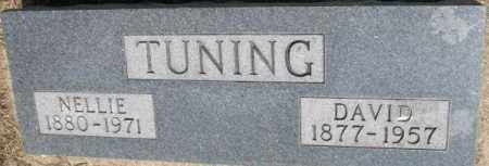 TUNING, DAVID - Dixon County, Nebraska | DAVID TUNING - Nebraska Gravestone Photos
