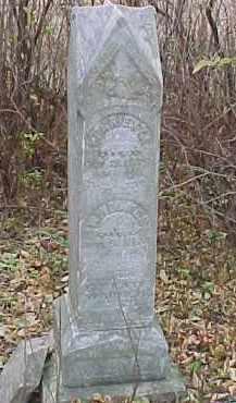 WARNER, LUELLA - Dixon County, Nebraska | LUELLA WARNER - Nebraska Gravestone Photos