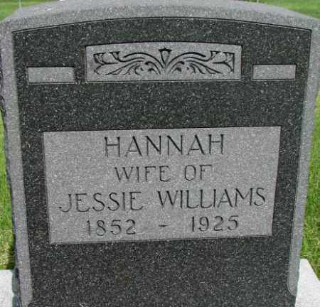 WILLIAMS, HANNAH - Dixon County, Nebraska | HANNAH WILLIAMS - Nebraska Gravestone Photos