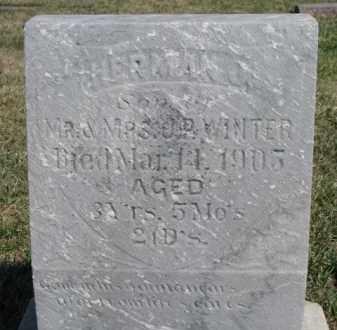 WINTER, HERMAN J. - Dixon County, Nebraska | HERMAN J. WINTER - Nebraska Gravestone Photos