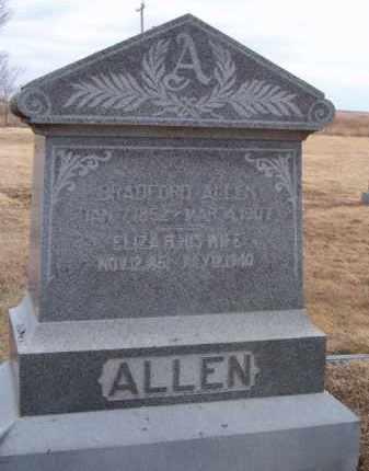 ALLEN, ELIZABETH - Dodge County, Nebraska | ELIZABETH ALLEN - Nebraska Gravestone Photos
