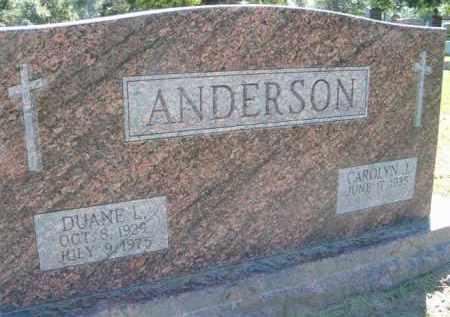 ANDERSON, DUANE L - Dodge County, Nebraska   DUANE L ANDERSON - Nebraska Gravestone Photos